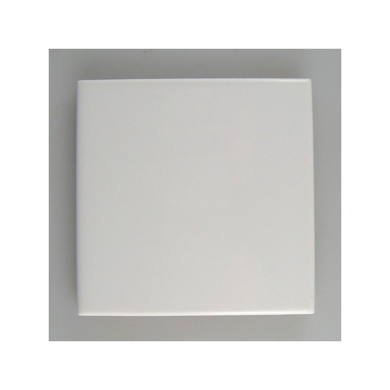 10 x 10 cm Hvid flise / kakkel